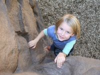 nicros-climbing-wall-city-of-shoreview-shamrock-park-7