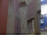 nicros-climbing-wall-livonia-com-rec-center-2