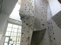 nicros-climbing-wall-u-of-mn-st.paul-2